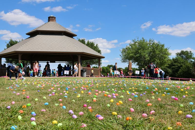 Eggs Scattered on Lawn by Gazebo